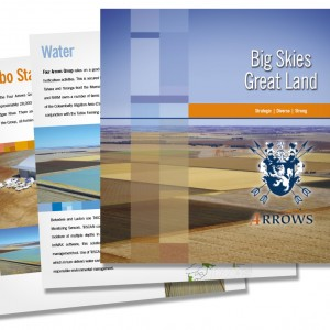 Four Arrows Corporate Brochure
